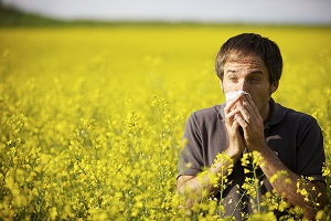 allergens Combat Seasonal Allergies